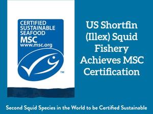 US Shortfin (Illex) Squid Fishery Achieves MSC Certification
