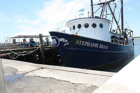 Stephanie Bryan Fleet | Rhode Island Bill Signing | The Town Dock